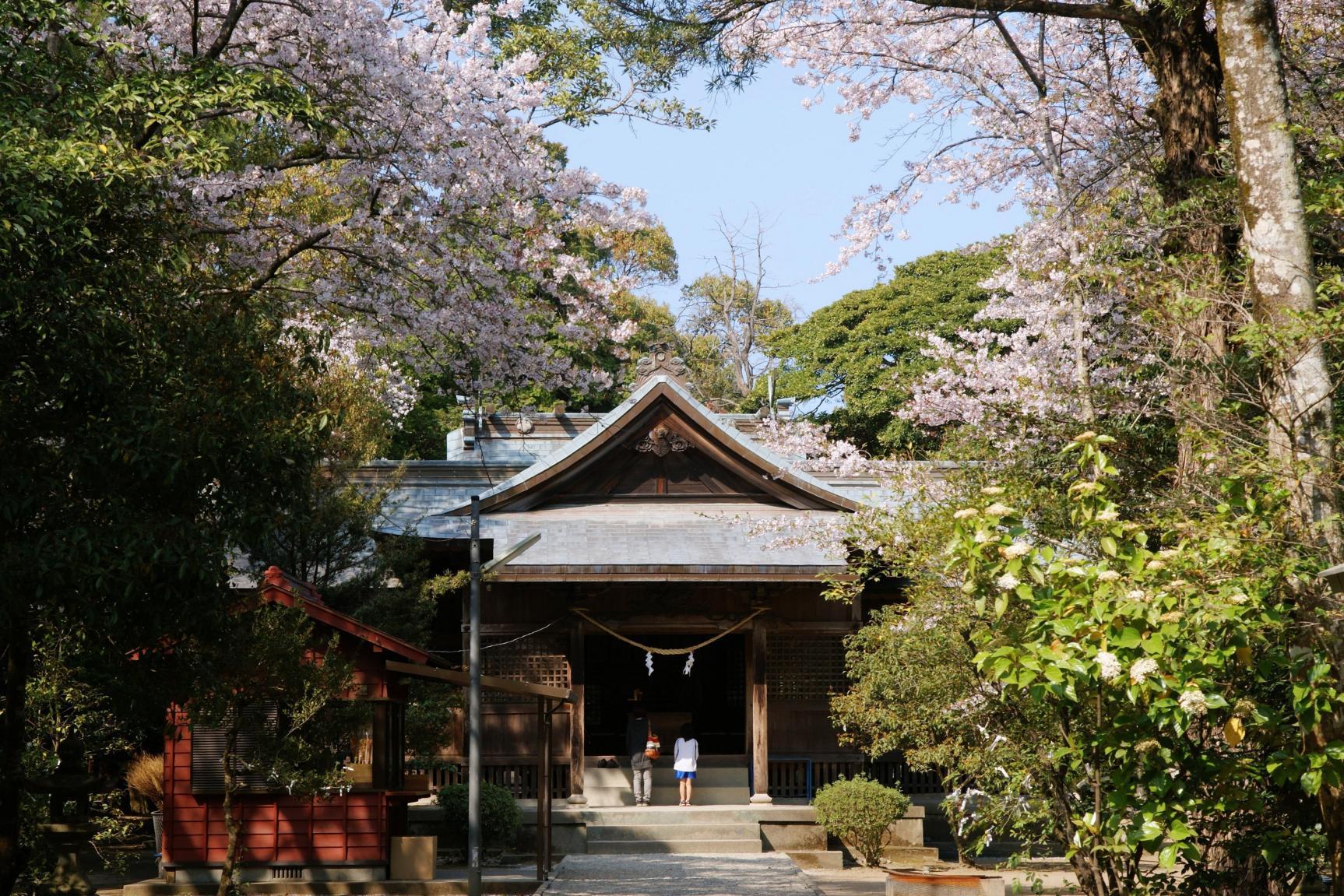 日本初の夫婦が祀られる江田神社-1