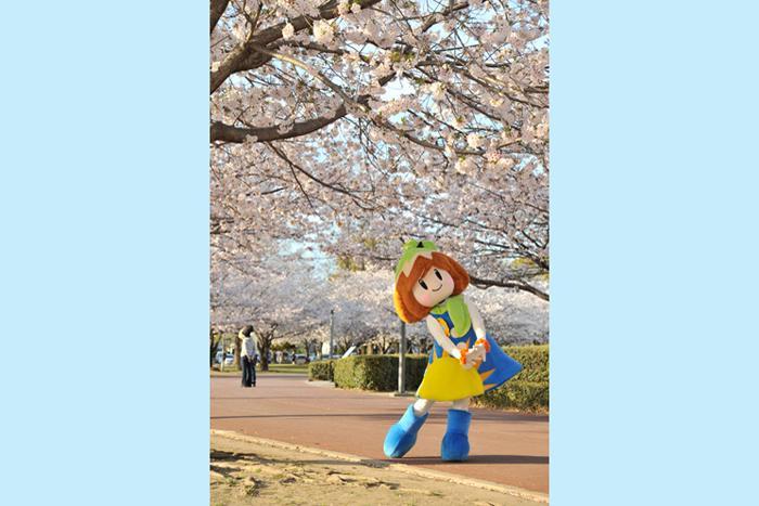 宮崎総合文化公園-1