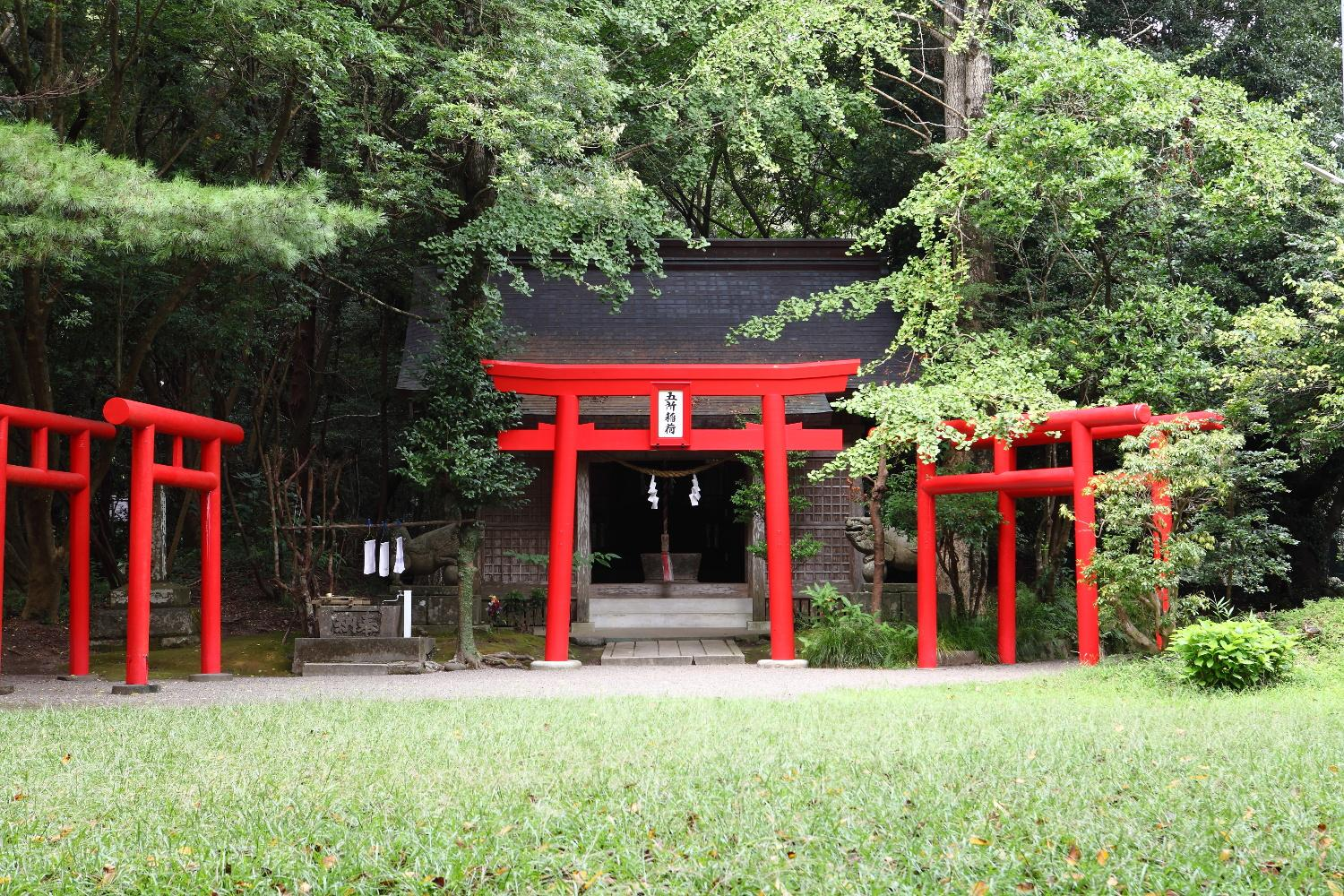 Three highlights of Miyazaki Jingu Shrine-1