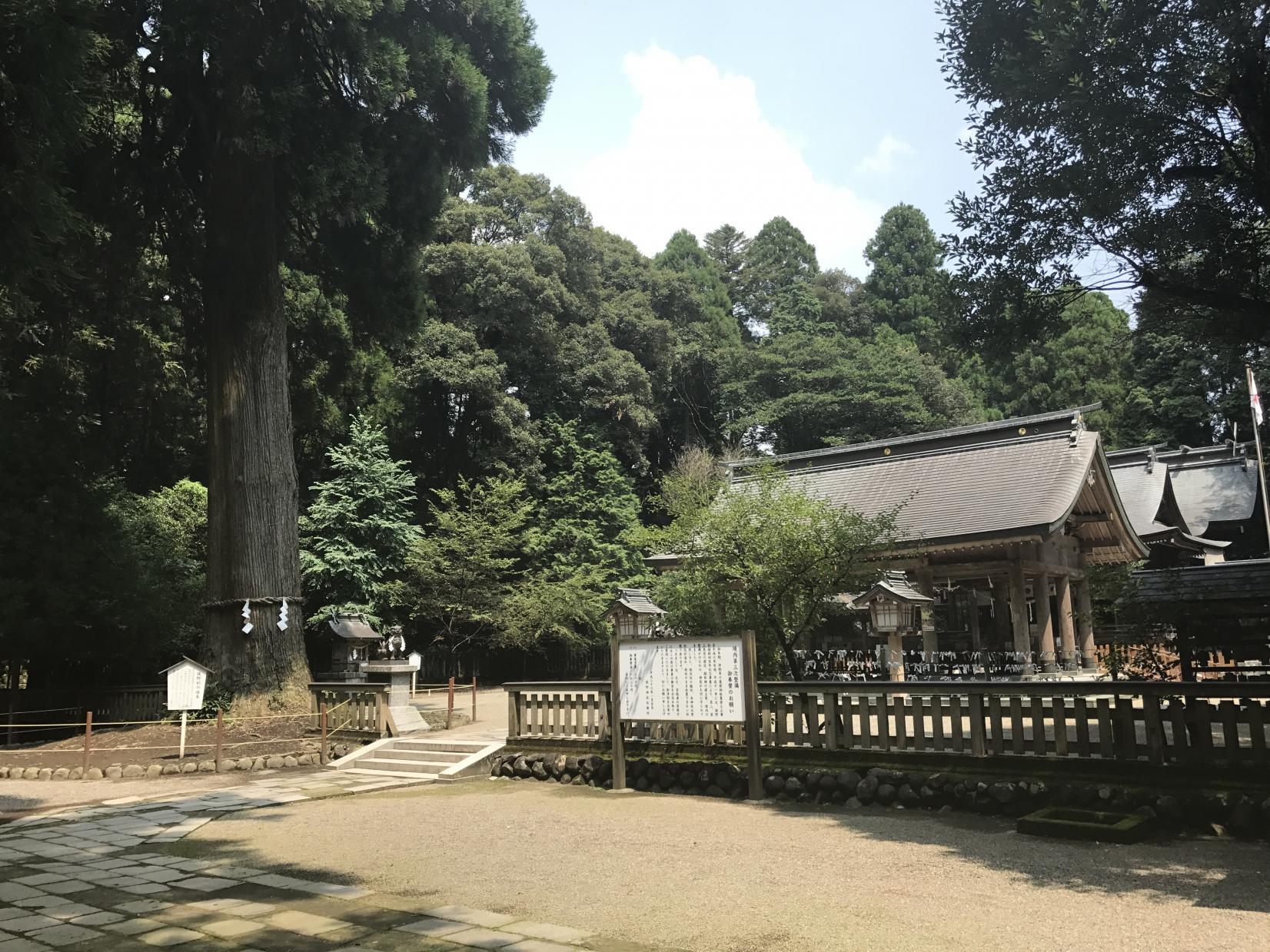 宮崎県高原町にある「狭野神社」は神武天皇ご生誕の地-0