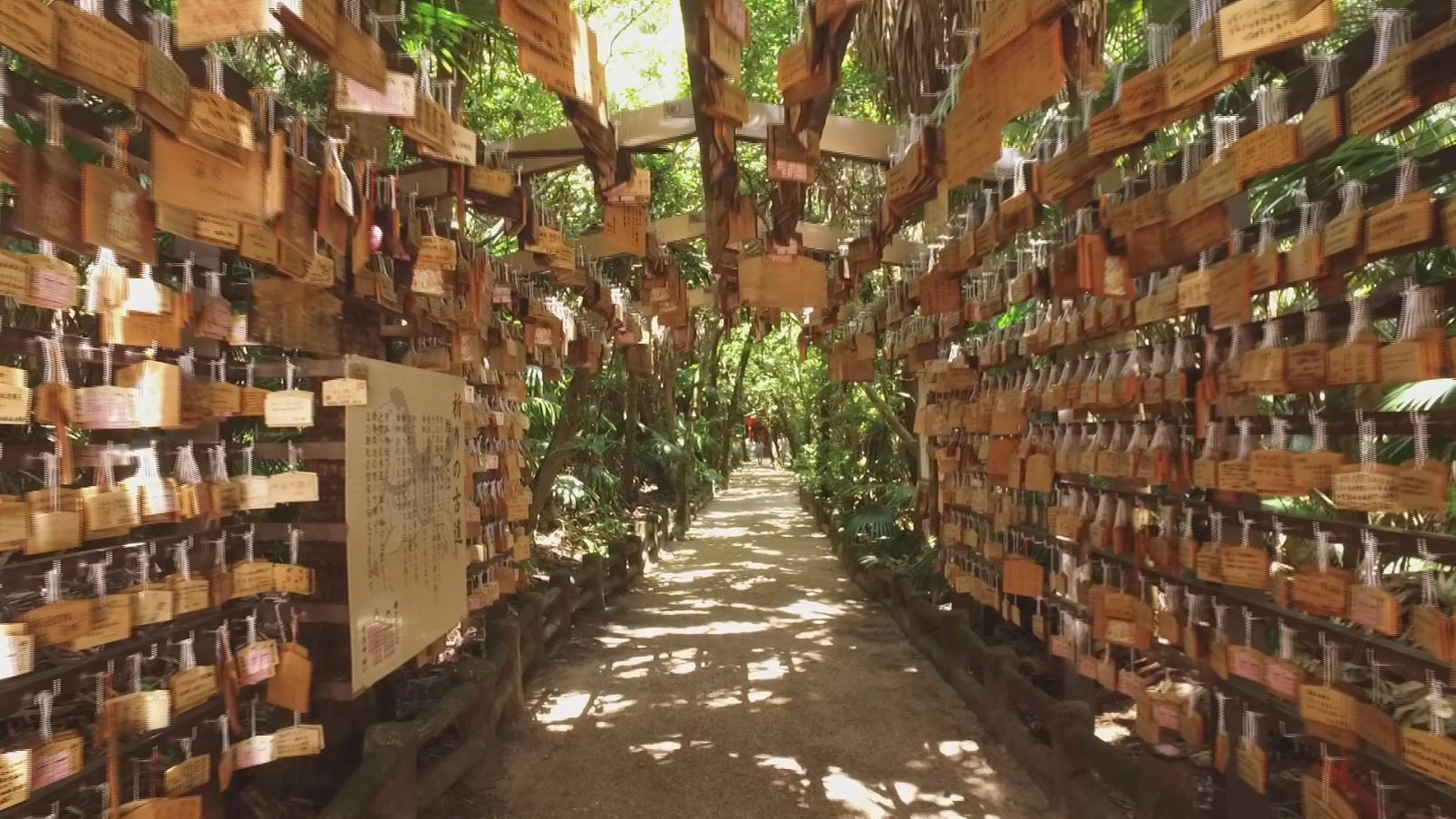 青島神社-6