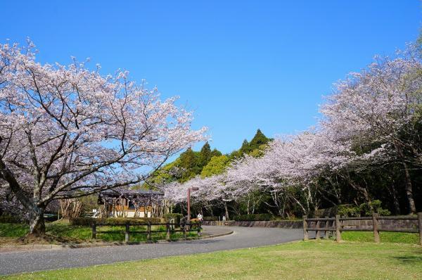 県立平和台公園-9