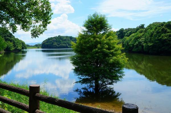県立平和台公園-4