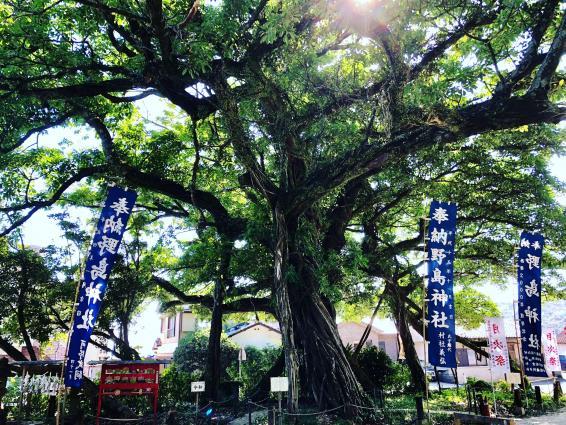 野島神社-4