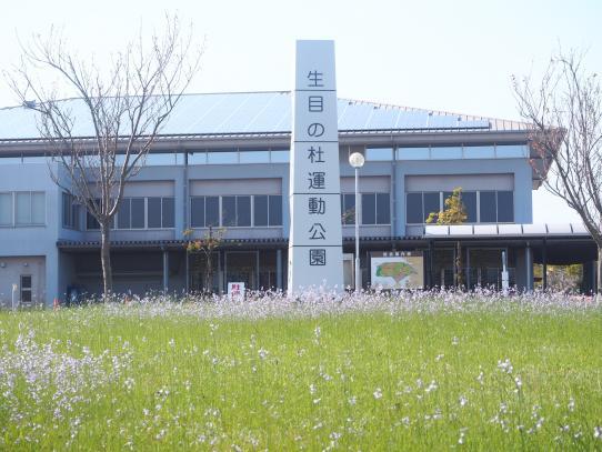 宮崎市生目の杜運動公園-2