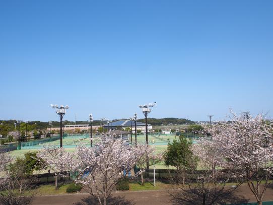 宮崎市生目の杜運動公園-1