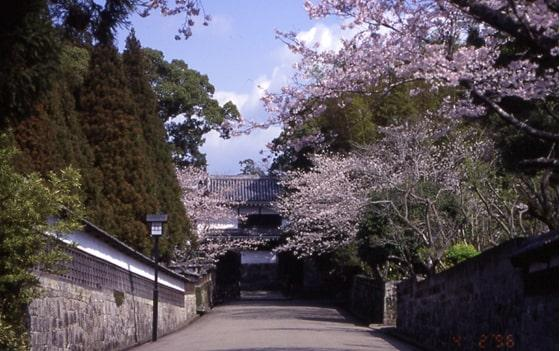 Obi Castle-2