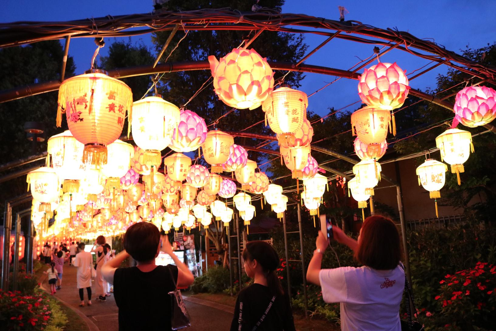 Miyazaki Gourmet × Lantern Night-0