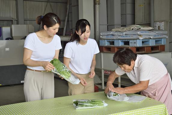 ハウス農業体験-4