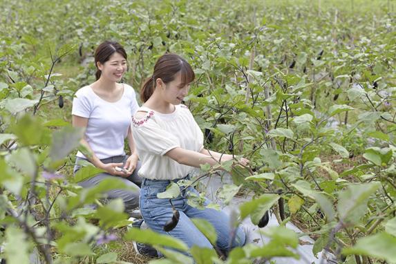 無農薬農業体験(全日コース)-5