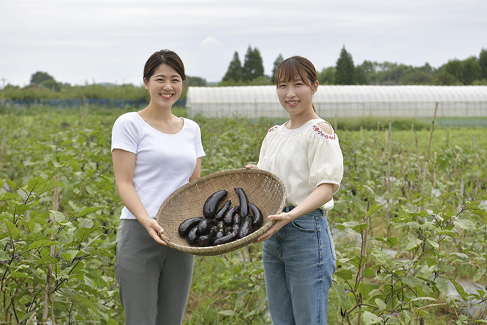 無農薬農業体験(全日コース)-1