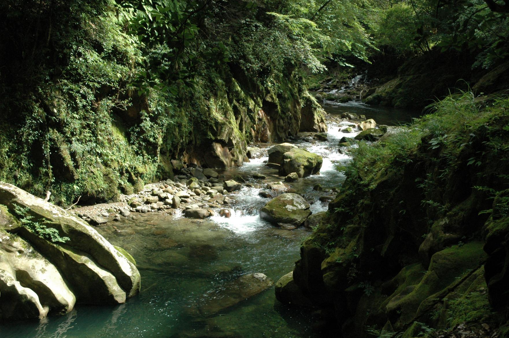 加江田渓谷(宮崎自然休養林)-1