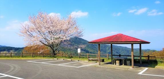 椿山森林公園-5