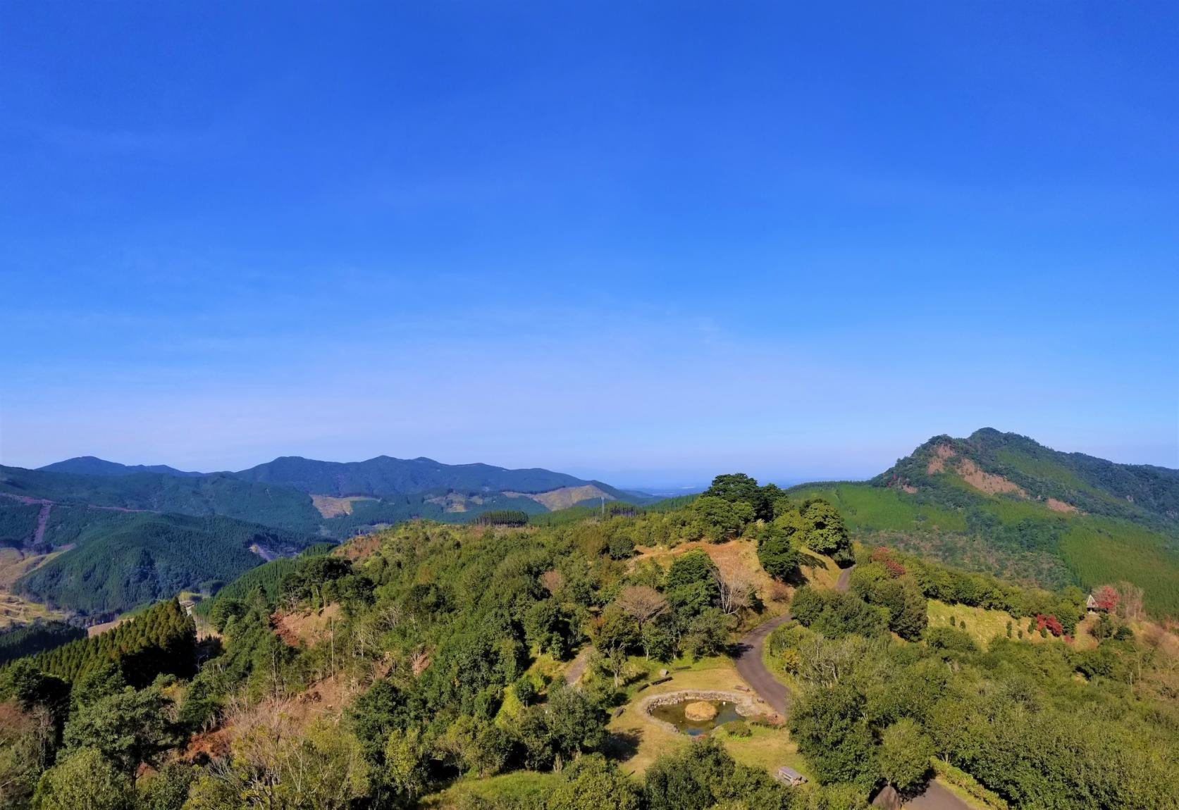 椿山森林公園-3
