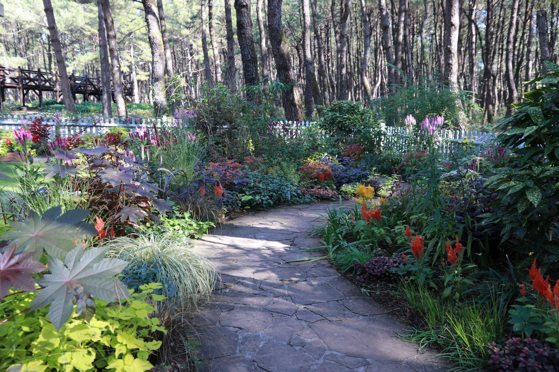 英国式庭園「秋のフラワーガーデンショー」-2