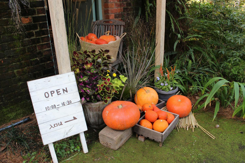 英国式庭園「秋のフラワーガーデンショー」-3