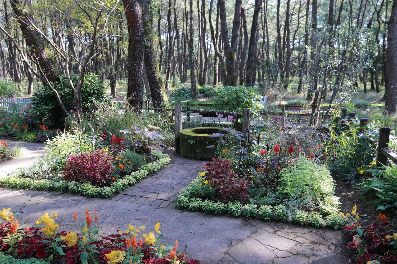 英国式庭園「秋のフラワーガーデンショー」-1