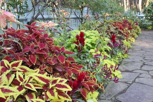 英国式庭園「秋のフラワーガーデンショー」-5
